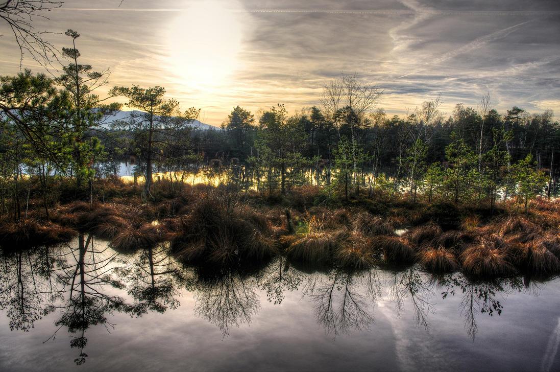 Schlurp Island by Burtn