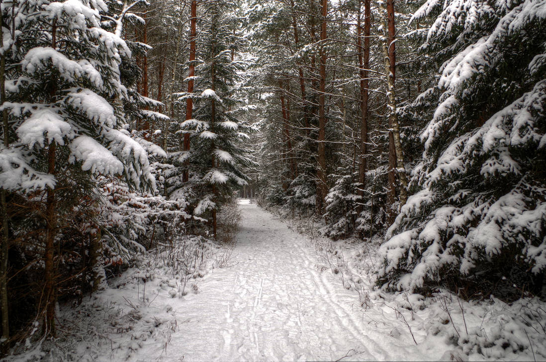 Walking On Snow by Burtn
