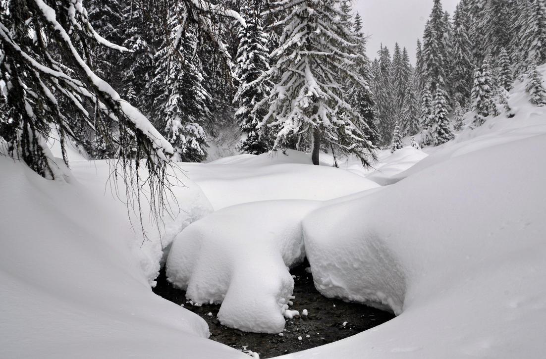 Winter Riverscape by Burtn