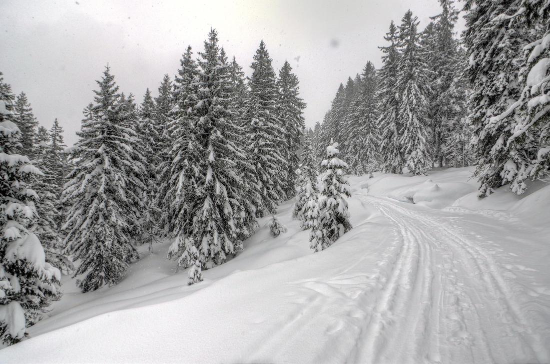 Winter Road by Burtn