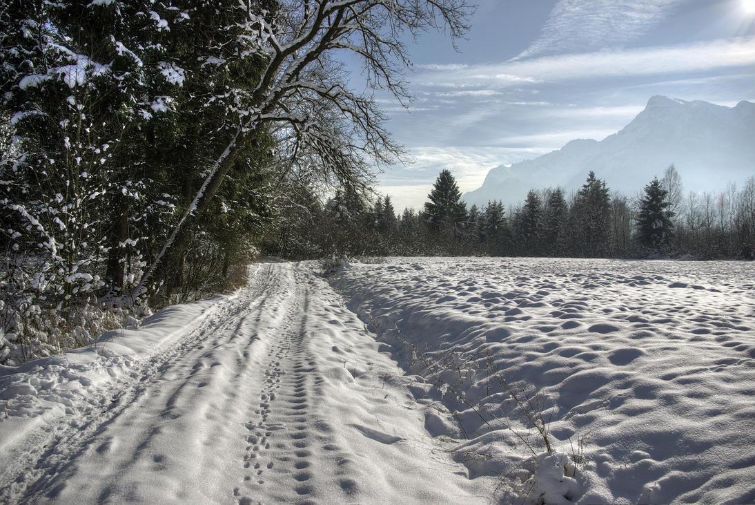 Sunny Winterday by Burtn