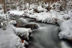 Silver River by Burtn
