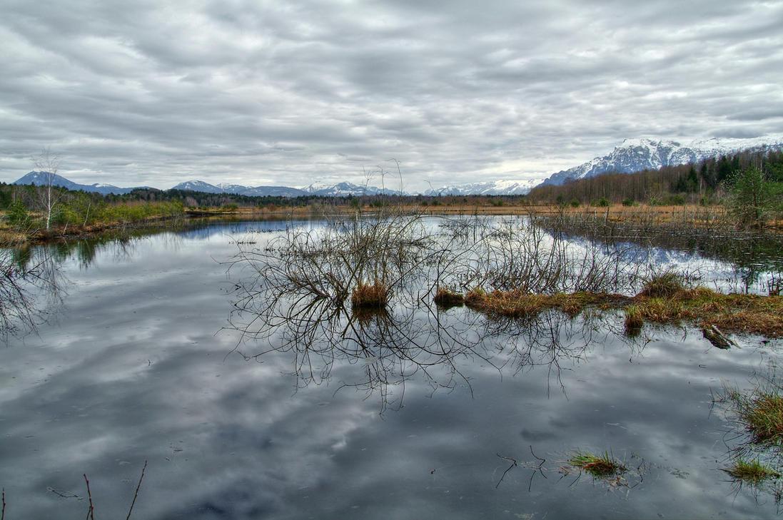 The Dead Swamp by Burtn