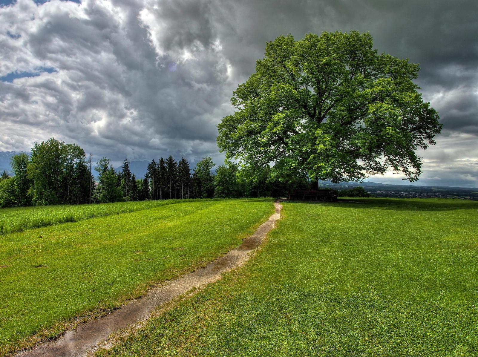 There Will Be Rain by Burtn