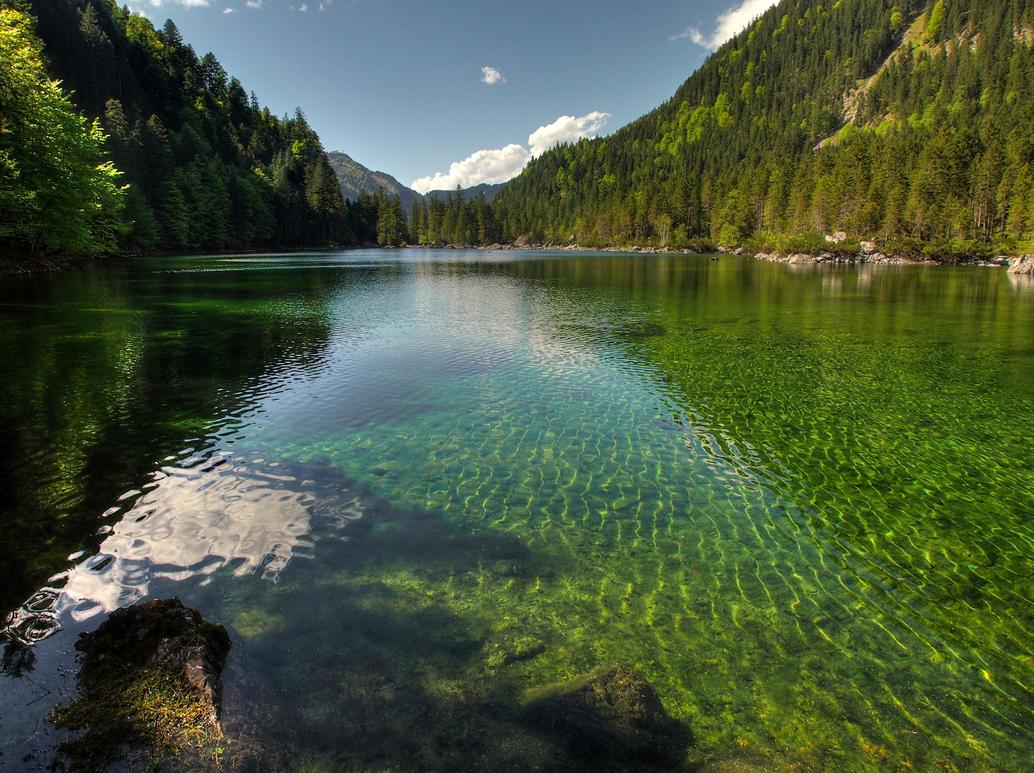 Gentle Green by Burtn