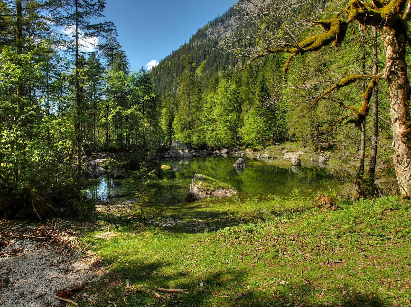 Background With Pond by Burtn