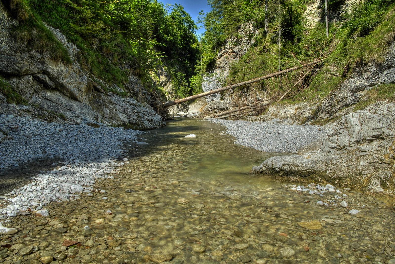 Natural Riverscape by Burtn