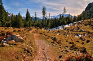 Autumn Wilderness by Burtn