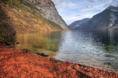 Silent Autumn Bay