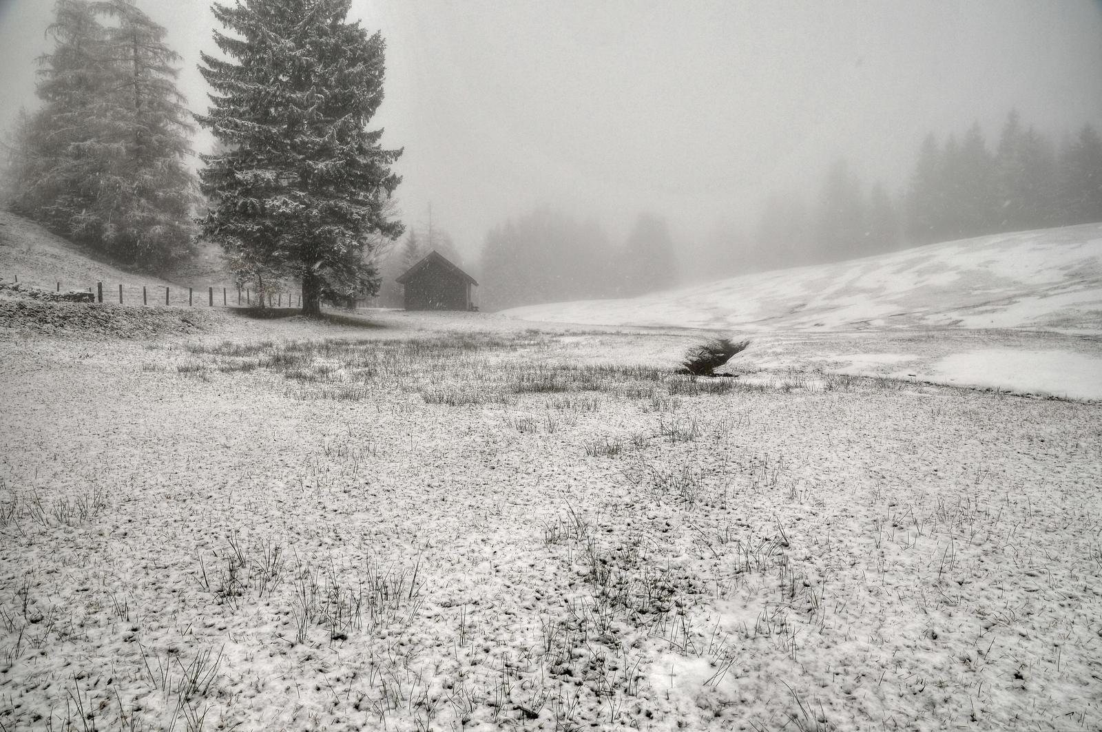 Snowfall Background by Burtn