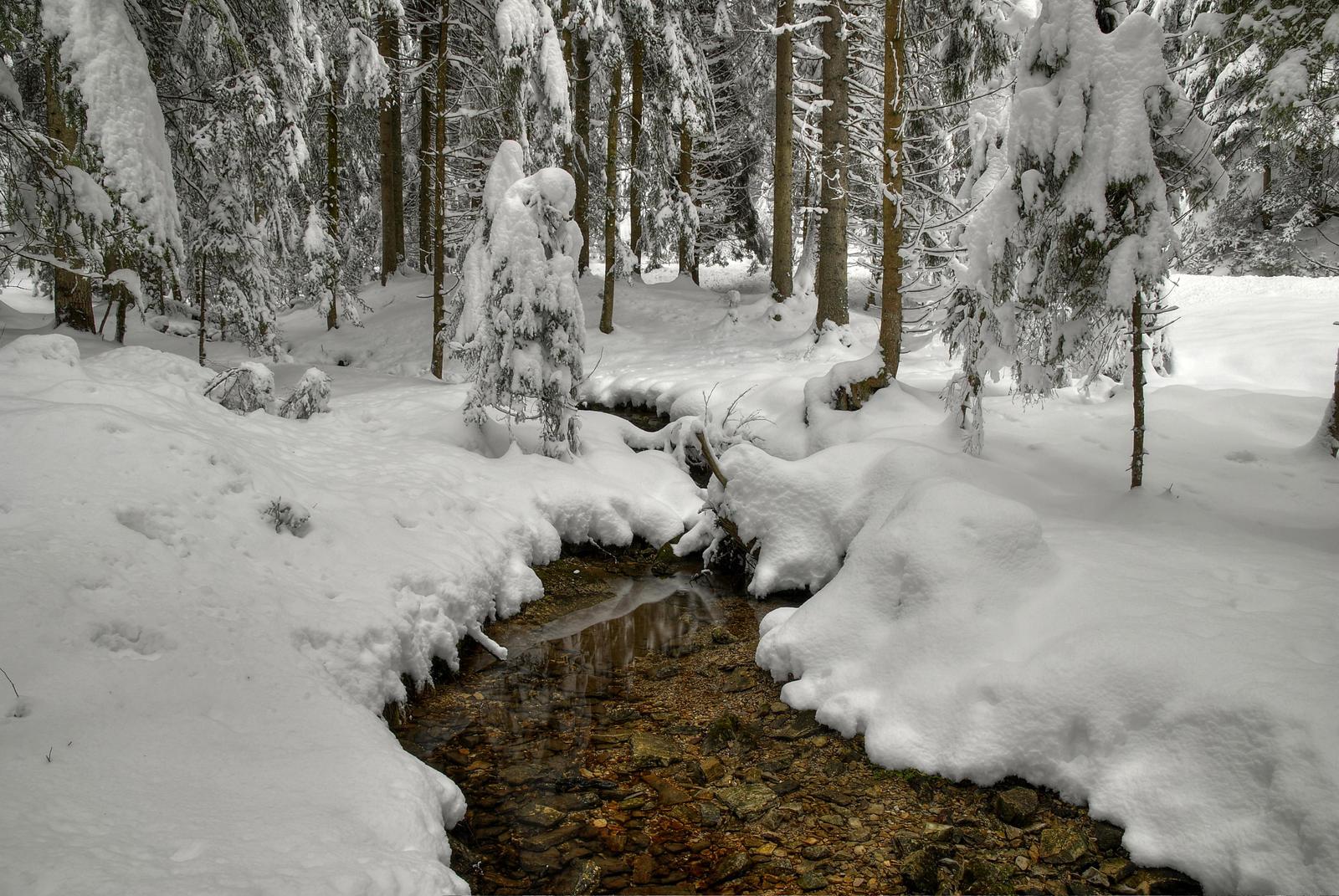 Snowy Again by Burtn