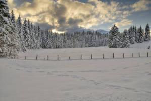 Fency Winter Background by Burtn
