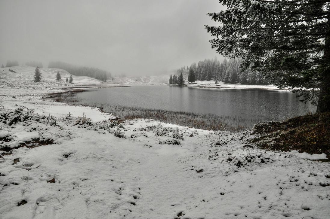 Near The Lakeside by Burtn