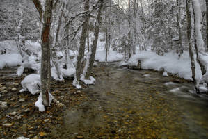 Frosty River by Burtn
