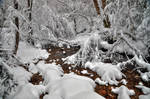 That Snowy River 2nd