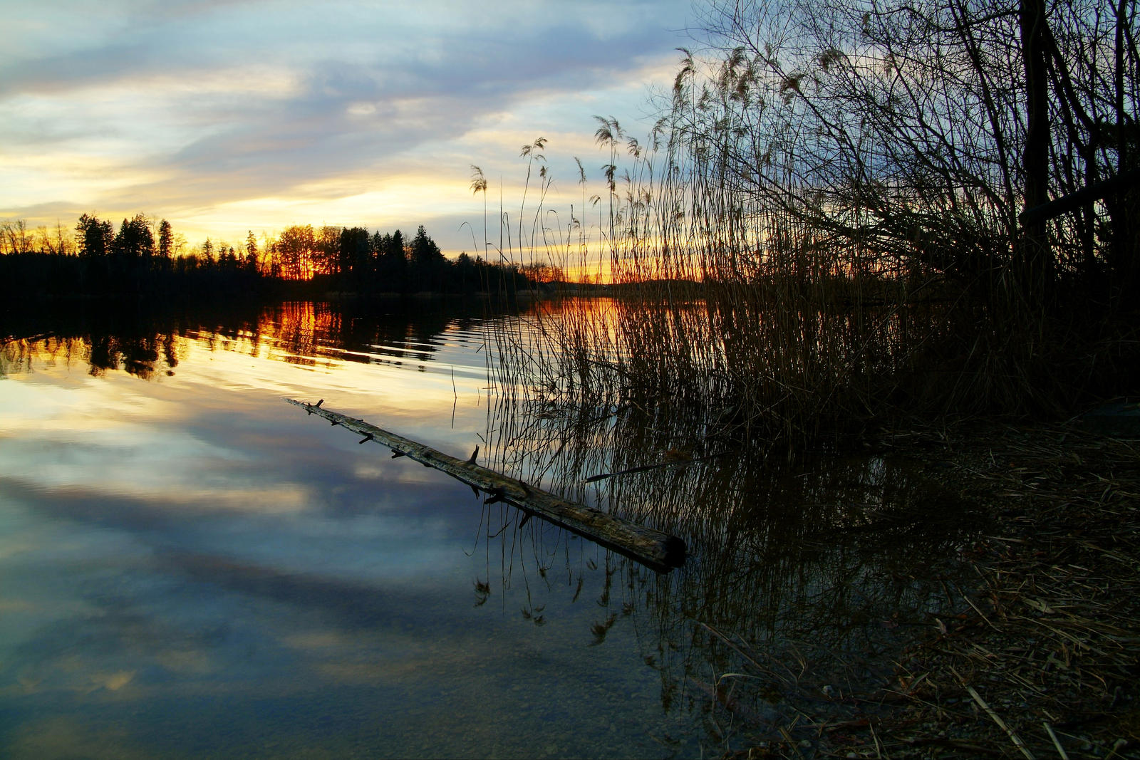 Golden Hour Lakeside by Burtn