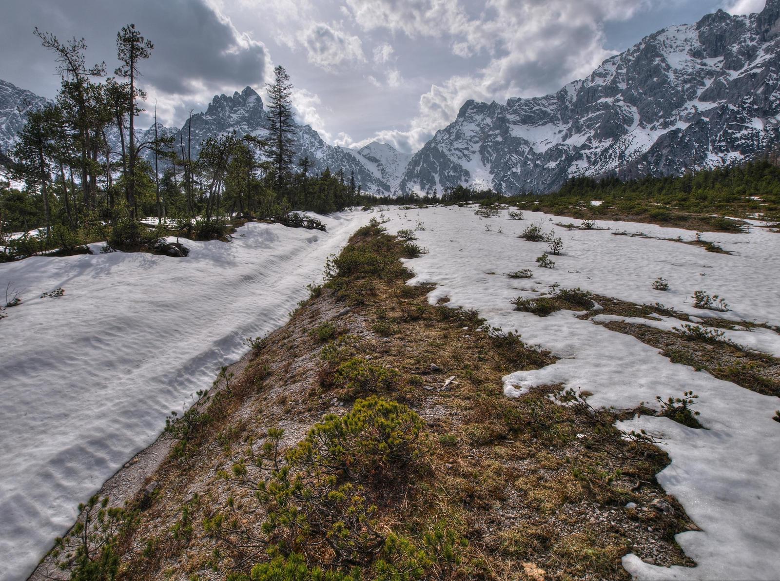 Spring Wilderness Background by Burtn