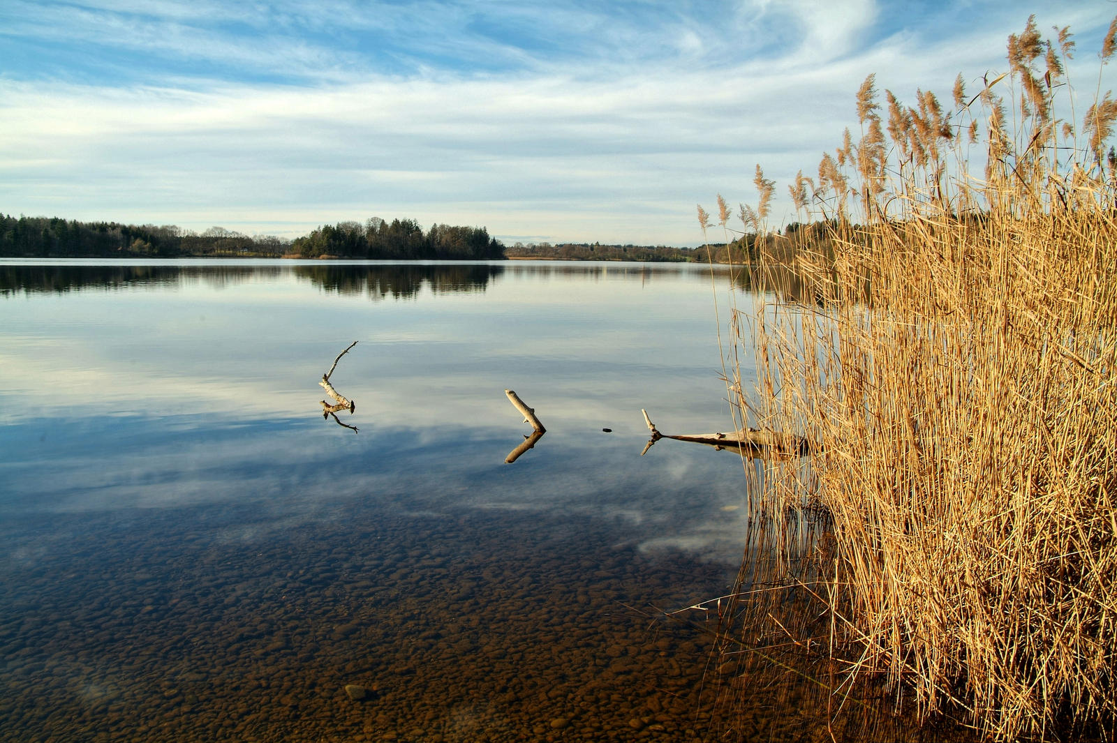 Moory Lake by Burtn