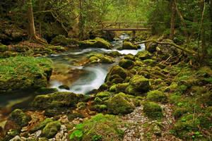 Forest Scene With Bridge by Burtn