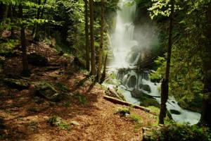 Thundering Forest by Burtn
