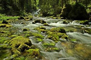 Water Is Life by Burtn
