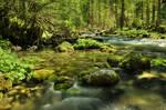 Tender River