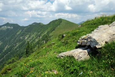Hillside Background by Burtn