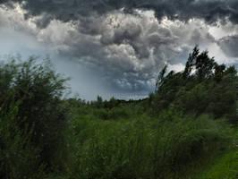Passing Storm by Burtn