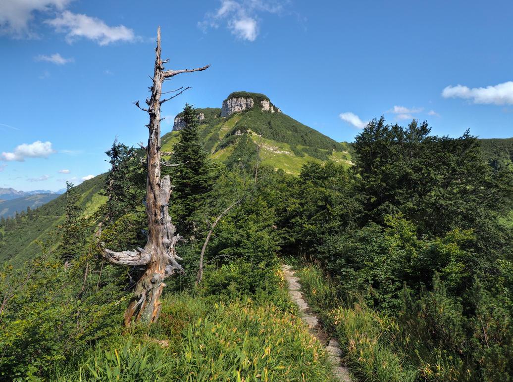 Adventure Path 2nd by Burtn