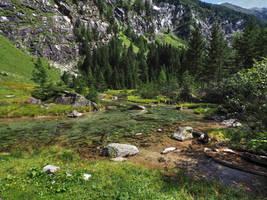 Mountain Stream by Burtn