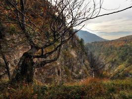 Autumn Canyon Background by Burtn