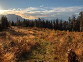 Fall Meadows by Burtn