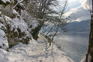 Lakeside Walkway by Burtn