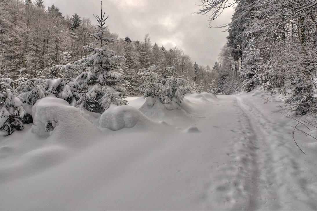 Silent Walking by Burtn
