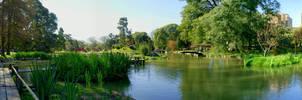 Japanese garden 2 by tgrq