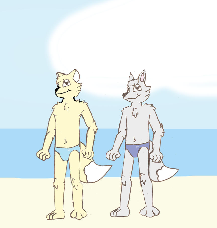 Dustin and Jari on a Beach in France by DPCBlueFox1991