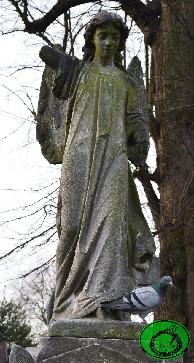 The Broken Angel by Idraemir