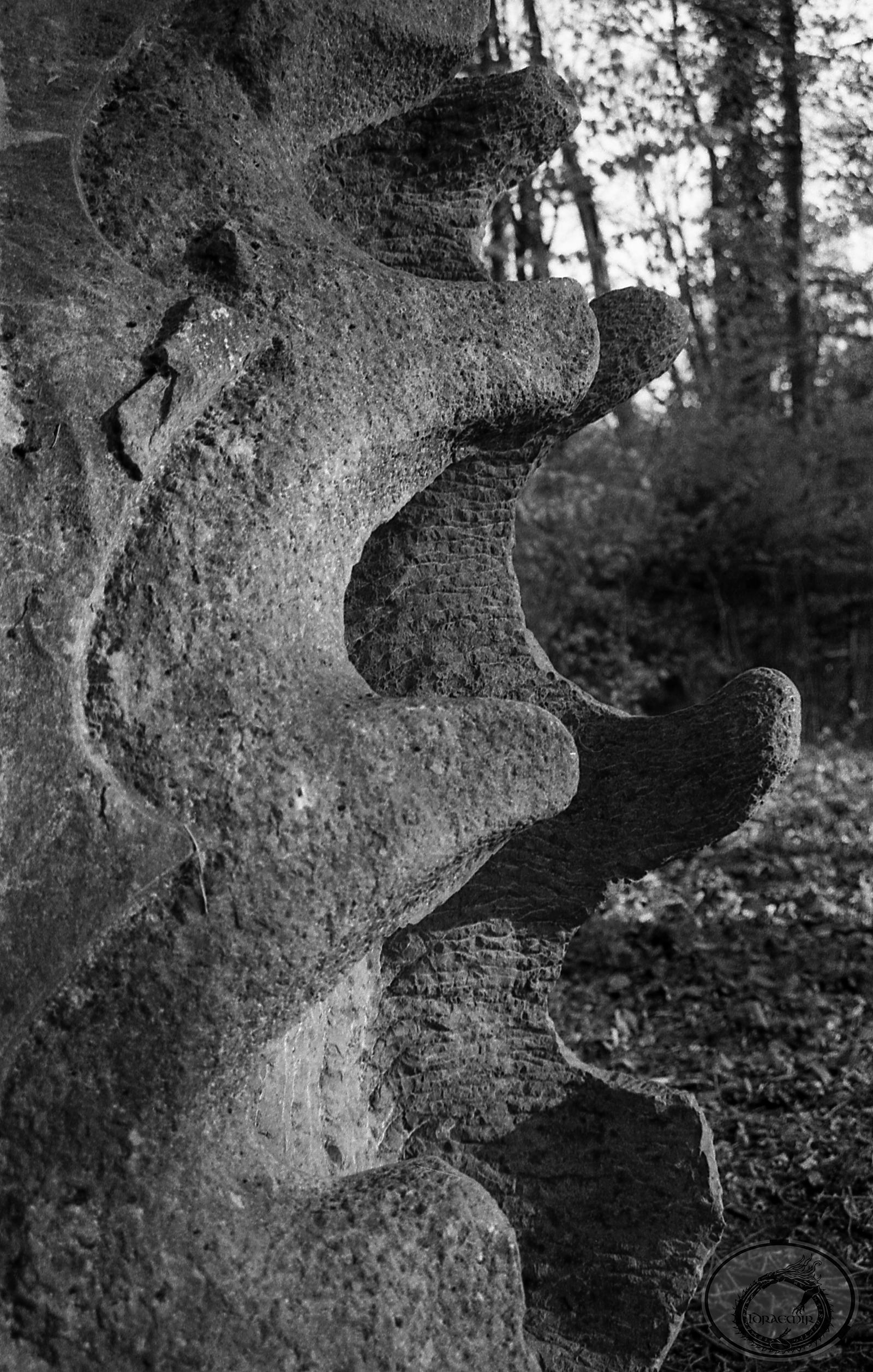 Stone Jaws by Idraemir