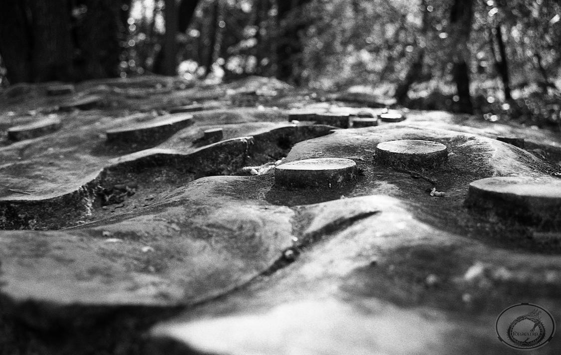 Stone Soil by Idraemir