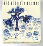 The Joshua Tree Reloaded !
