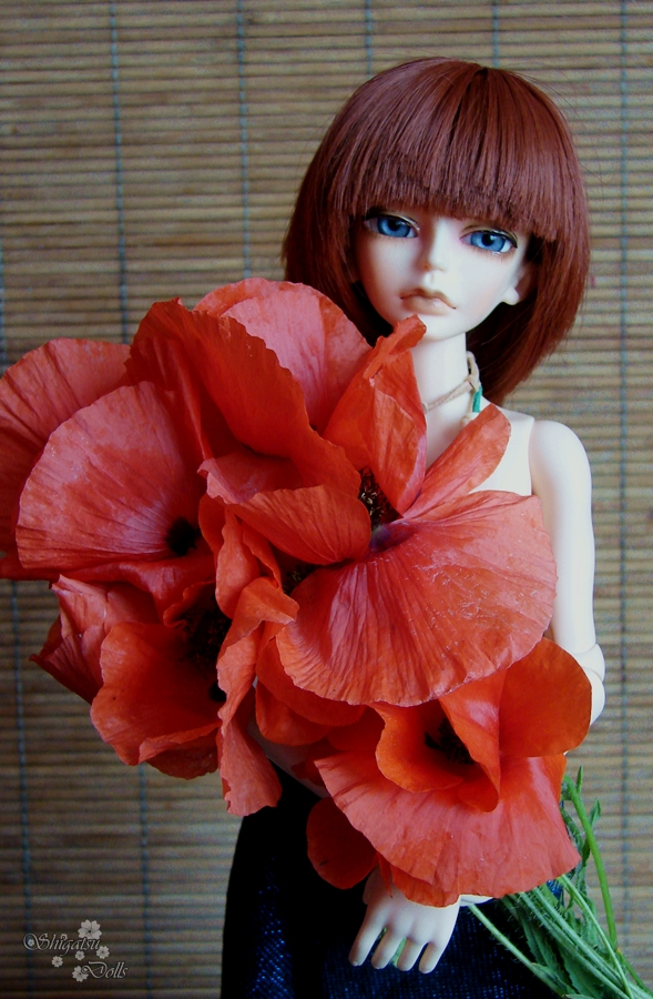 Little red with Poppy bouquet by ShigatsuPL