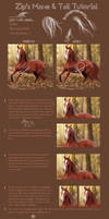Mane and Tail Tutorial.
