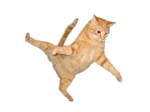 cat_png_by_kasirun_hasibuan-d99ey1q.png
