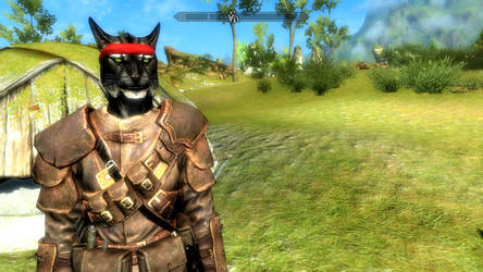 Picture of my Skyrim Khajit character