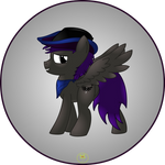Cowboy Pony Commision