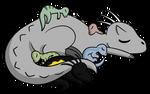Raptor fam taking a lil' nap