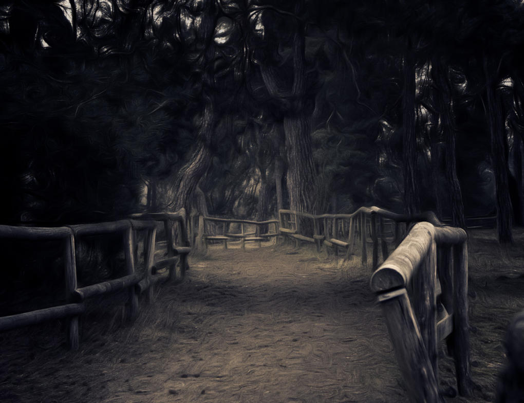 Forest by undeathspawn