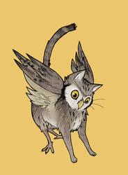 Prouncing Owl Cat
