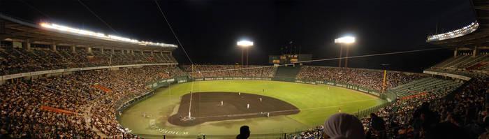 Baseball Carps - Tiger Panoram by Harlequitmix