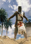 Crusader of Holy Land